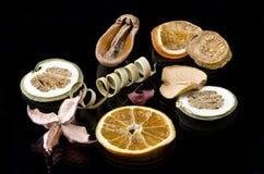 Натюрморт - высушенные плодоовощи Стоковые Фотографии RF