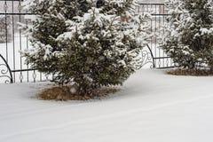 Натюрморт двор зимы, загородка металла и сломленный гранит, ветви ели в снеге во время снежности стоковые изображения rf