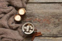 Натюрморт зимы уютный Стоковая Фотография RF