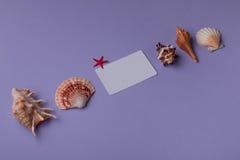 Натюрморт малой карточки подарка и морских вещей Стоковое Изображение