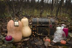 Натюрморт на хеллоуине стоковые изображения rf