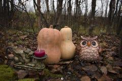 Натюрморт на хеллоуине стоковые изображения