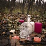 Натюрморт на хеллоуине стоковое фото rf