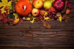 Натюрморт осени, сжатые тыквы с листьями падения и autum Стоковое фото RF