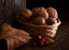 Натюрморт осени с грецким орехом, лист и плодом шиповника. Стоковые Изображения RF