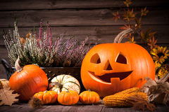 Натюрморт осени с тыквами хеллоуина Стоковое Изображение RF