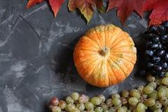 Натюрморт осени с тыквой, виноградинами и кленовыми листами на конкретной предпосылке Стоковые Изображения RF