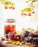 Натюрморт осени с чашкой и баком чая с красными ягодами, шарфом и падением выходит на солнечную природу Стоковые Фото