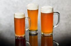 Натюрморт пива стоковые изображения rf