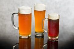 Натюрморт пива стоковые фотографии rf