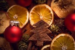 Натюрморт рождества с плодоовощ и специями Стоковые Фото
