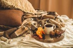 Натюрморт рождества с чашкой с чаем или кофе, печеньями в форме снежинок, апельсинами с украшениями рождества и гайками стоковое фото