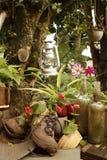 Натюрморт сада с старыми ботинками Стоковые Фотографии RF