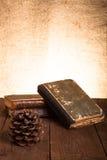 Натюрморт - стог старых книг и конуса сосны на старых деревянных животиках Стоковая Фотография