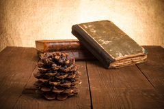 Натюрморт - стог старых книг и конуса сосны на старых деревянных животиках Стоковое фото RF