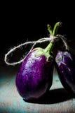 Натюрморт с баклажаном (aubergine) Стоковые Изображения RF