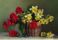 Натюрморт с букетом daffodils весны, тюльпанов в корзине Стоковая Фотография