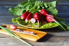Натюрморт с весенними овощами - редиской, салатом и зелеными луками стоковое изображение