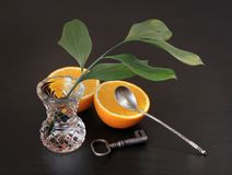 Натюрморт с оранжевой и зеленой ветвью в кристаллической вазе Стоковая Фотография RF
