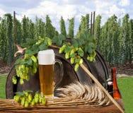 Натюрморт с пивом стоковые изображения rf