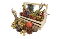 Натюрморт с плодоовощами осени стоковые фотографии rf