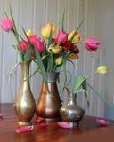 Натюрморт с тюльпаном весны стоковое фото