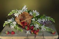Натюрморт с цветками и ягодами Стоковые Фотографии RF