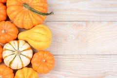 Натюрморт тыквы осени Стоковые Фото