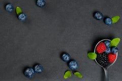 Натюрморт ягод стоковое изображение rf