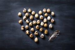 Натюрморт яичек птиц карточка пасха Стоковые Изображения