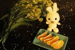 Натюрморт: tangerines, цветки и связанный белый кролик стоковое фото rf