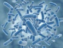 наука иллюстрации клеток бактерий голубая бесплатная иллюстрация
