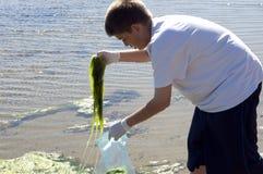 наука проекта океана Стоковое Изображение