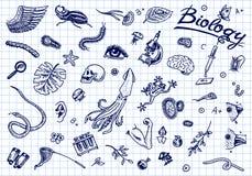 Научная лаборатория в биологии Комплект значка исследования биохимии Молекулы организмов живых существ Медицина внутри иллюстрация штока