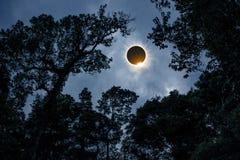 Научное естественное явление Полное солнечное затмение с диамантом Стоковые Изображения