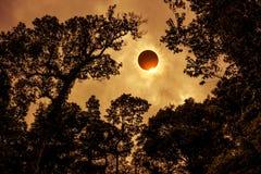 Научное естественное явление Полное солнечное затмение с диамантом Стоковые Изображения RF