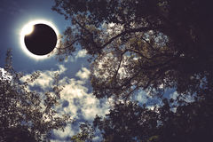 Научное естественное явление Полное солнечное затмение с диамантом Стоковое Фото
