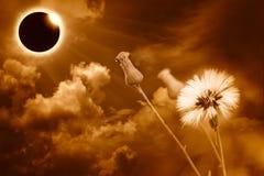 Научное естественное явление Полное солнечное затмение с диамантом Стоковое фото RF
