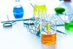 Научное оборудование в лаборатории эксперименты по науки химики имея обсуждение в лаборатории Ассистент науки работая в химикате стоковое фото