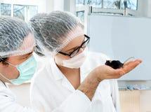 Научные работники наблюдают transgenic мышью стоковое фото