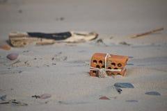Находка на пляже стоковые изображения