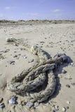 Находка Beachcombing веревочки на пляже Стоковое Изображение RF