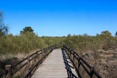 Национальное болото Vila Реальн de Santo Антонио в porugal Стоковые Изображения