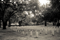 Национальное кладбище Стоковые Изображения RF