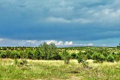 Национальный лес апаша-Sitgreaves, дорога Управления лесным хозяйством 51, Аризона, Соединенные Штаты Стоковое фото RF