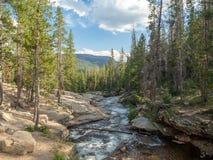 Национальный лес Uinta-Уосат-тайника, озеро зеркал, Юта, Соединенные Штаты, Америка, около озера предкрылк и Park City стоковое изображение rf