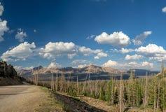 Национальный лес Uinta-Уосат-тайника, озеро зеркал, Юта, Соединенные Штаты, Америка, около озера предкрылк и Park City стоковые изображения