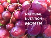 Национальный месяц питания Стоковые Изображения