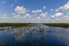 Национальный парк болотистых низменностей - Флорида Стоковая Фотография
