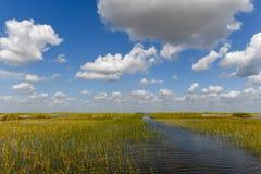 Национальный парк болотистых низменностей - Флорида Стоковое Фото